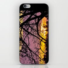 Branches Beholding Beauty iPhone & iPod Skin