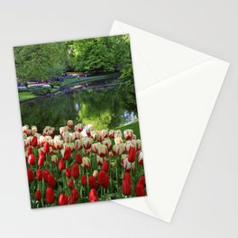 Beautiful Red and White Tulips of Keukenhof in the Morning Sun Stationery Cards