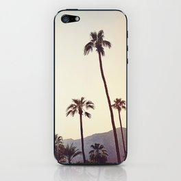 Palm Trees in the Desert iPhone Skin