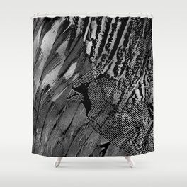 Abstract Feather and Bird Composition Shower Curtain