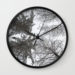 Forest trees in winter. View to the top. Wall Clock