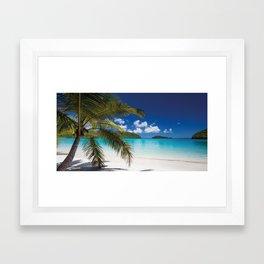 Tropical Shore Framed Art Print