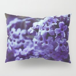 Lilac Blooming Pillow Sham