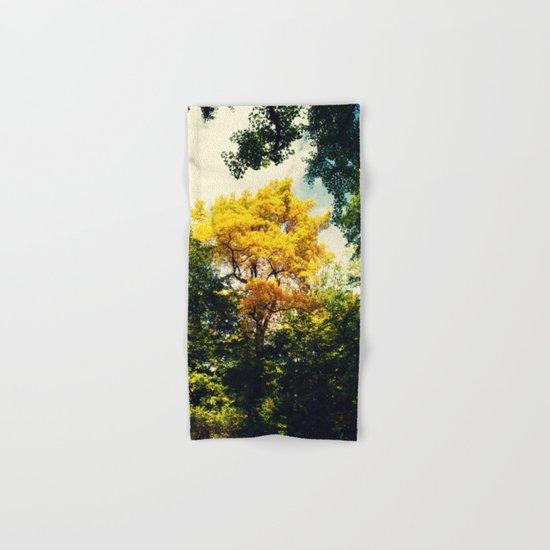 fall in Central Park Hand & Bath Towel