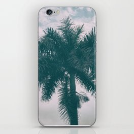 Palm Trees in tropical climate iPhone Skin