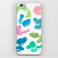 United Cats of Colour iPhone & iPod Skin