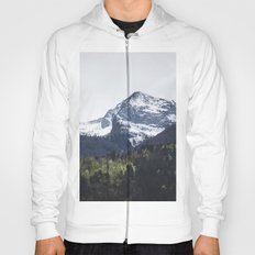 Winter and Spring - green trees and snowy mountains Hoody