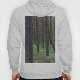 Sounds of Symmetry Hoody