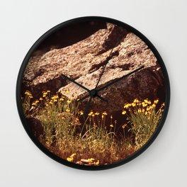 Central Texas - Near Lake Travis Wall Clock