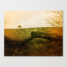 Textured Field Canvas Print