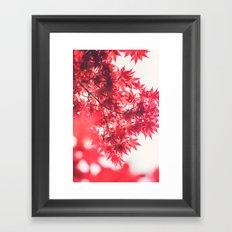 Autumn 55454 Framed Art Print