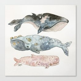 Stacked Watercolor Whales Canvas Print