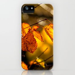 Linden tree leaves in autumn iPhone Case