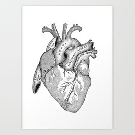 Study of the Heart Art Print