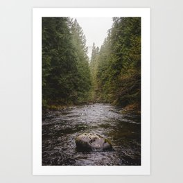 Salmon River II Art Print