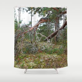 100 KM To Lapand Shower Curtain