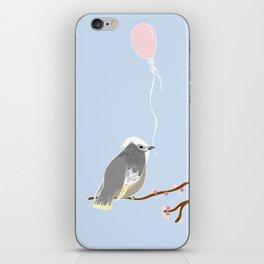 The birthday bird iPhone Skin