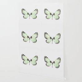 Green Grass Spring Butterfly Wallpaper