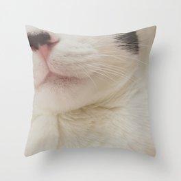 Black Nose Kitten Throw Pillow