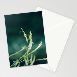 Flower story No1 Stationery Cards