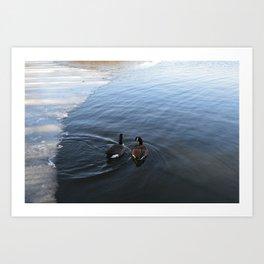 Geese on the Lake Art Print