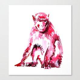 Monkey Just Sitting Around Canvas Print