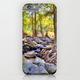 Cypress iPhone Case