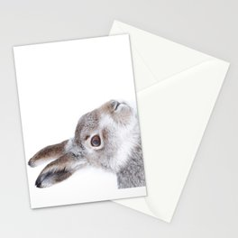 Curious hare Stationery Cards