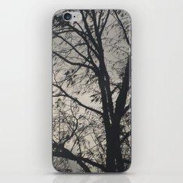 The Barren Tree iPhone Skin