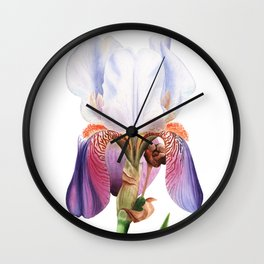 Bearded Iris Wall Clock