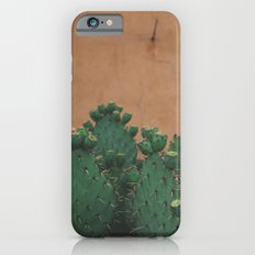 Route 66 Prickly Pears iPhone 6s Slim Case
