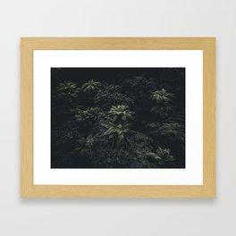 Wildflower Series - Ferns Framed Art Print
