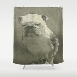 This Is Embarrassing Shower Curtain