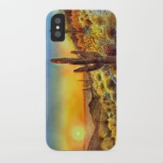 Arizona's Sunset iPhone X Slim Case
