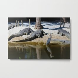 The Reckless Brother Metal Print