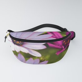 African Daisies by Reay of Light Photography Fanny Pack