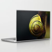 snail Laptop & iPad Skins featuring Snail by LoRo  Art & Pictures