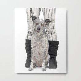 Dingo Dog Metal Print