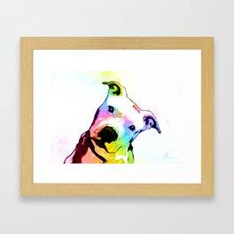 Pit bull | Rainbow Series | Pop Art Framed Art Print