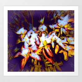 Air Brushed Snow Covered Bush  Art Print