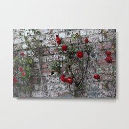 Roses and Brick Metal Print