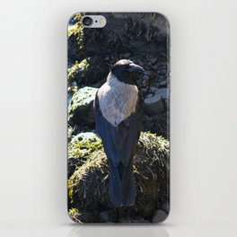 Dispute iPhone Skin