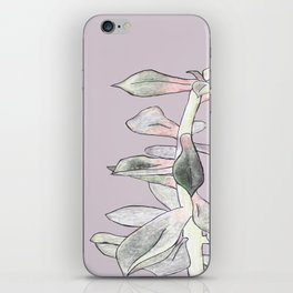 A Succulent With Crayons iPhone Skin