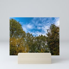 Trees and sky Mini Art Print