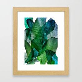 Palm leaf jungle Bali banana palm frond greens Gerahmter Kunstdruck