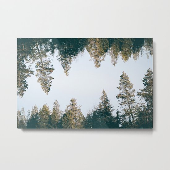 Forest Reflections IX Metal Print