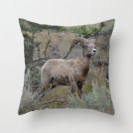 Wake Up Sheeple Throw Pillow