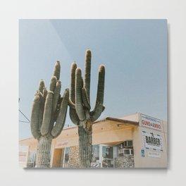 CACTUS II / Yucca Valley, California Metal Print