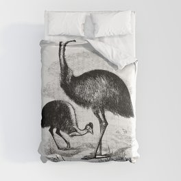 Cassowary from Adventures of a Gold-Digger (1856) Comforters