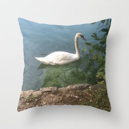 Elegance and Grace Throw Pillow